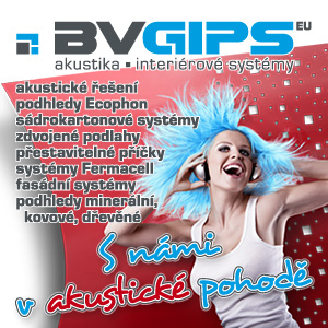 banner 201144-bv-gips-300x300.jpg
