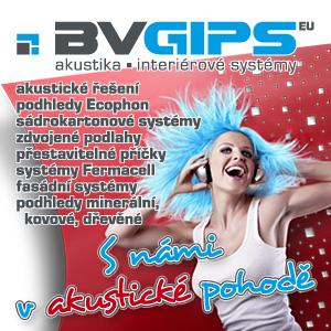 banner 201144-bv-gips-300x300.jpg